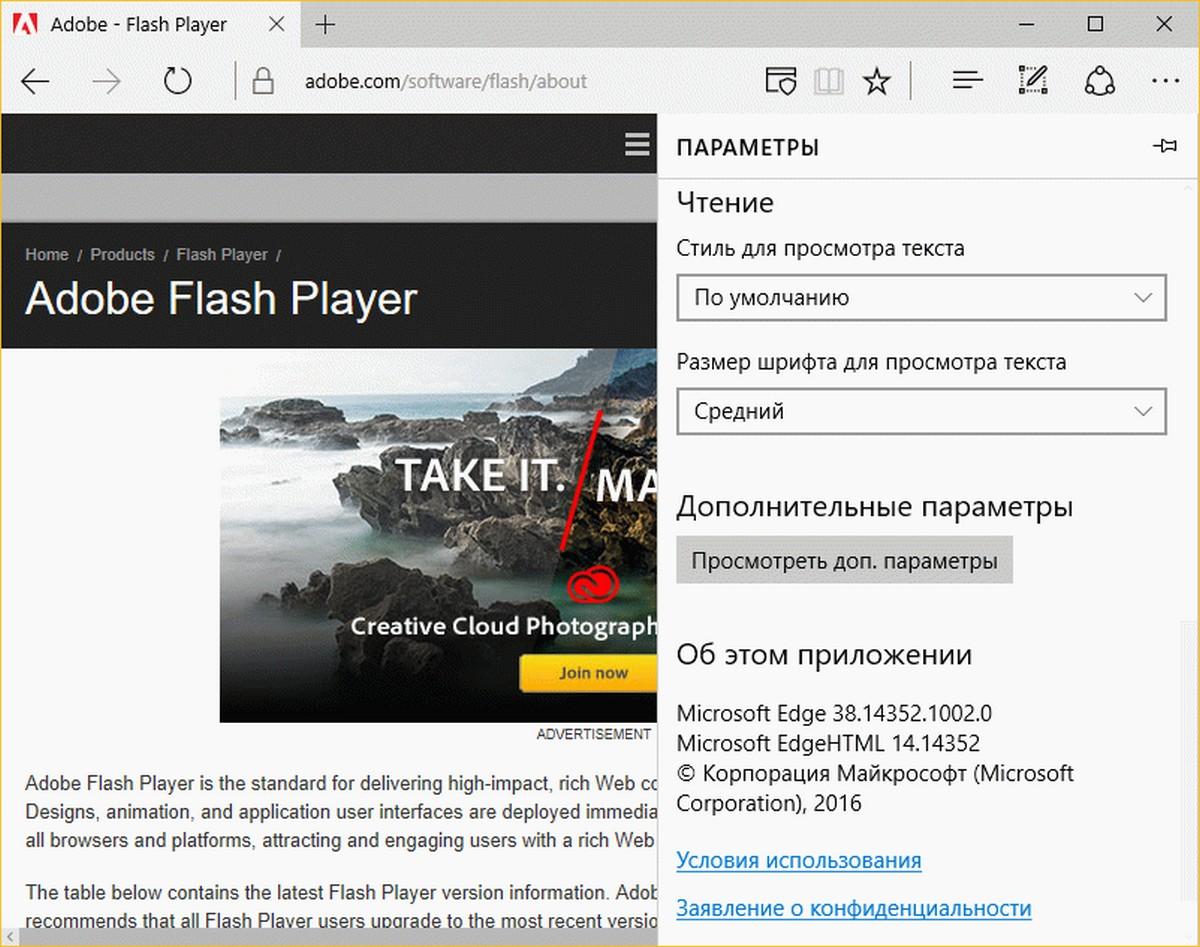 Как установить adobe flash player в tor browser hyrda как войти в сеть darknet вход на гидру